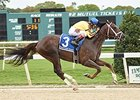 Carpe Diem Returns a Tampa Bay Derby Winner