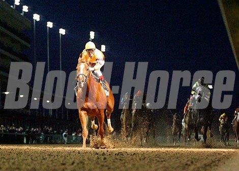 As darkness fell on Churchill Downs, it was Wise Dan who emerged to win the Clark Handicap (gr. I) in 2011.
