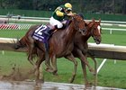 2007 Breeders' Cup Distaff