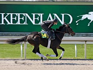Keeneland Sale Juveniles to Breeze April 4