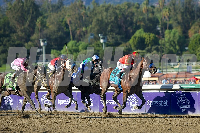Secret Circle, Martin Garcia up, wins the Xpressbet Breeders' Cup Sprint (gr. I).