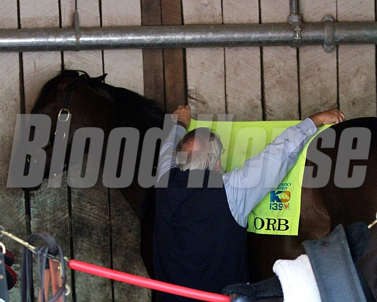 Trainer Shug McGauhey puts the exercise saddle cloth on Orb in his stall at Churchill Downs on May 2, 2013.