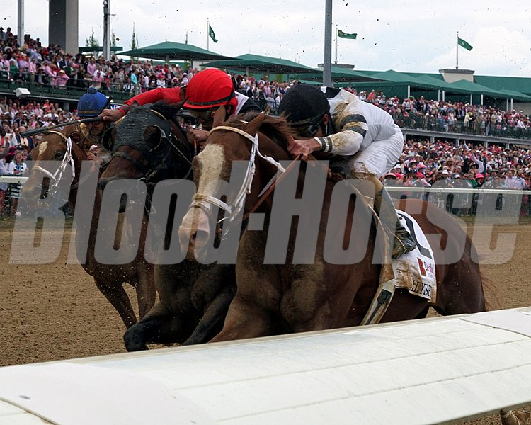 Will Take Charge with Gary Stevens up during the running of the 11th Alysheba (GII) at Churchill Downs on May 2, 2014.