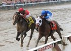 Alpha Springs Gate-to-Wire Woodward Upset