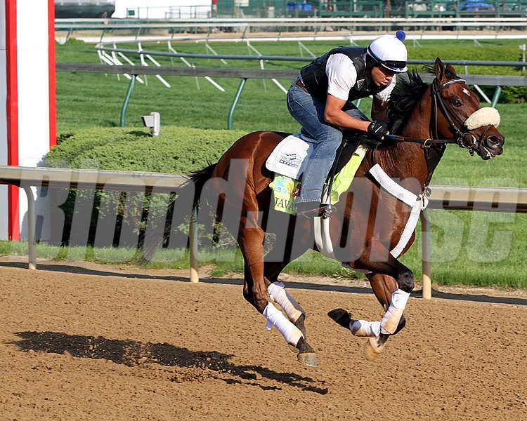 Java's War on the track at Churchill Downs on May 1, 2013.
