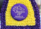2014 Breeders' Cup Sights