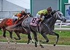 Graydar Proves Real Deal in Tough New Orleans