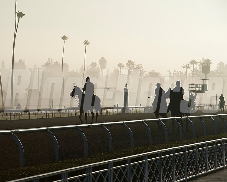 Caption:  morning fog