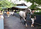 Keeneland September Sale - Day 1 Wrap-Up