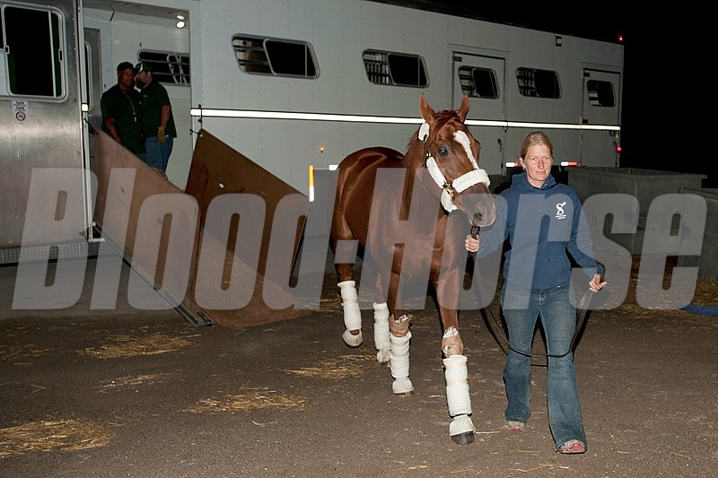 Ricoh Woodbine Mile favorite and Horse of the Year Wise Dan arrives after traveling all night to Woodbine with asst. Ruth Schmidt.