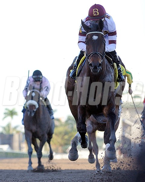 Royal Delta and jockey Mike Smith win the 2013 Sabin Stakes (gr. 3).