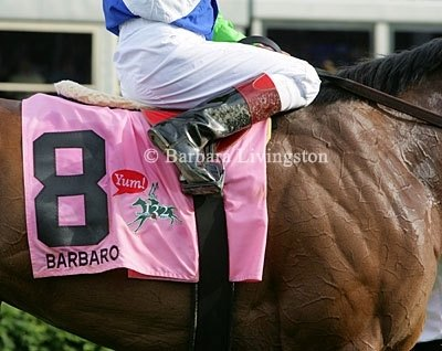 Barbaro - 2006 Kentucky Derby