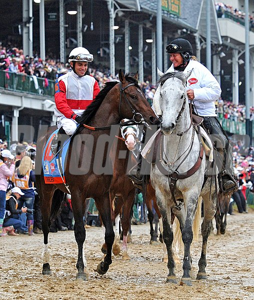 Orb, Joel Rosario up, in the Kentucky Derby post-parade... © 2013 Rick Samuels/The Blood-Horse