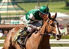 Stellar Wind Goes Long in Santa Anita Breeze