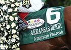 Kentucky Derby Prep Race Results and Points