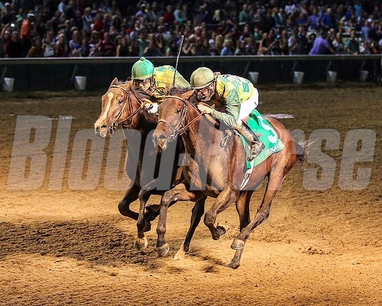 A pair of heavy longshots trained by Dale Romans for Donegal Racing swept the exacta in the $171,750 Grade III Iroquois Stakes at Churchill Downs when Cleburne (#5 Inside) edged a fast-closing Smart Cover by a neck providing a guaranteed berth in the 2013 Breeders' Cup Juvenile.