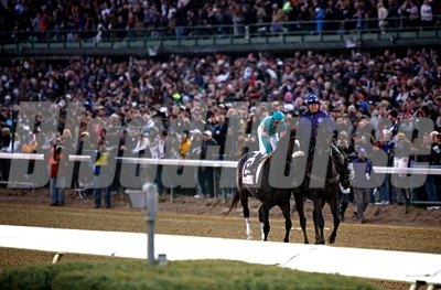 The crowd welcomes their queen, as she prepares for the Breeders' Cup Classic.