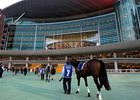 Dubai Super Saturday 2012