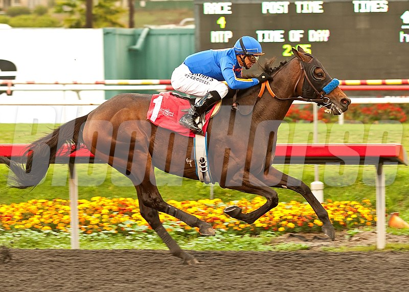Game On Dude and jockey Mike Smith win the Grade III, $250,000 Native Diver Stakes, Saturday, Deecember 1, 2012 at Betfair Hollywood Park, Inglewood CA.