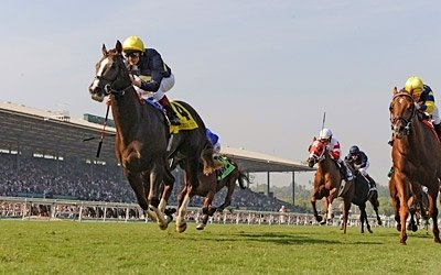 Pounced, a Kentucky-bred son of Rahy, won the Breeders' Cup Juvenile Turf in a driving finish over Bridgetown.