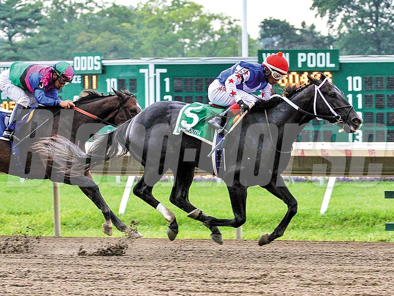 Dunkin Bend #5 with Ricardo Santana, Jr. riding won the $100,000 Grade III Sapling Stakes at Monmouth Park in Oceanport, New Jersey.