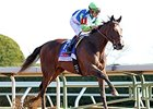 Divining Rod On Target for Preakness Stakes