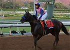 Breeders' Cup News Update for Nov. 2, 2014