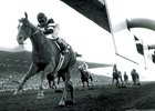 The Golden Era of the Santa Anita Handicap