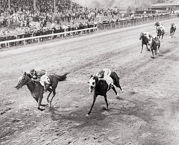 Kentucky Oaks winner Wistful claims the 2nd jewel in the unofficial filly Triple Crown at the finish of the 1949 Pimlico Oaks now known as the Black-Eyed Susan Stakes.  The unofficial filly Triple Crown consists of the Kentucky Oaks, Pimlico Oaks (later named the Black-Eyed Susan), and Coaching Club American Oaks.