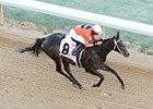 Consistent Sarah Sis Set for Fantasy Stakes