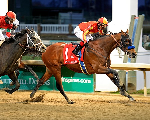 Hoppertunity made the most of his chance to finally run at Churchill Downs, grinding out his greatest career victory in the $551,000 Grade I Clark Handicap Presented by Norton Healthcare. The sophomore colt led a 3-year-old trifecta as Protonico and Constitution finished second and third over older horses.