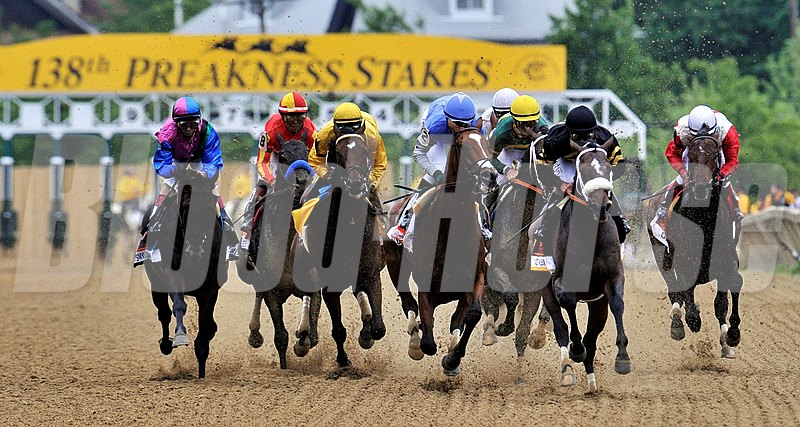 Oxbow (black cap) goes gate to wire, to win the 2013 138th Preakness Stakes...