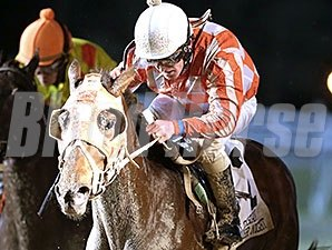 Private Promise wins the 2015 LA Bred Premier Night Starlet Stakes.