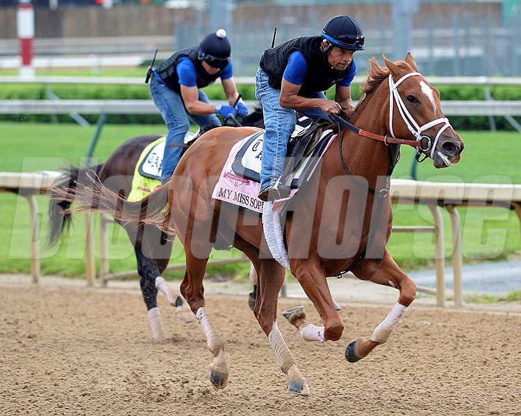 Caption: My Miss Sophia (Vinceremos in background)