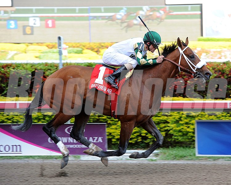 Mucho Macho Man winning the Gulfstream Park Handicap at Gulfstream Park on March 10, 2012.