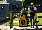 BC 2014: Bob Baffert Post Breeders' Cup Interview