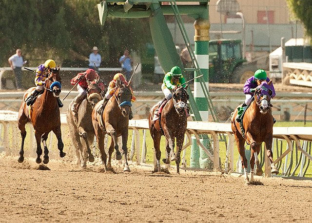 California Chrome and Victor Espinoza are in command in mid-stretch and go on to win the Grade I $1,000,000 Santa Anita Derby at Santa Anita Park in Arcadia, California.