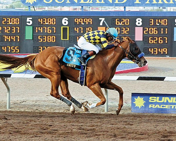 Favored Chitu put away stablemate Midnight Hawk in the drive for the wire as trainer Bob Baffert accounted for the first two finishers in the $800,000 Grade III Sunland Derby in New Mexico.