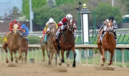 Untapable Horse Profile Bloodhorse