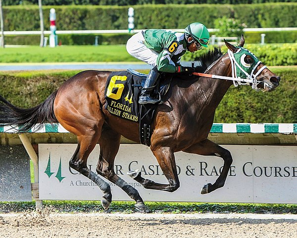 Scandalous Act won the $300,000 My Dear Girl Stakes in a romp at Calder Casino & Race Course to complete her sweep of the female division of the Florida Stallion Stakes.