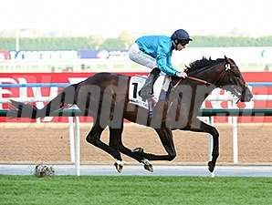 Brown Panther wins the 2015 Dubai Gold Cup.