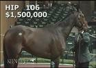 Keeneland Nov. Sale 2014 - Hip 106 - Iotapa