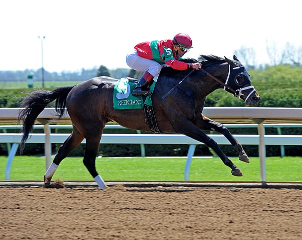 After being eased during his seasonal debut in the Donn Handicap Feb. 7 at Gulfstream Park, Protonico bounced back with an easy victory in the Grade III $150,000 Ben Ali Stakes at Keeneland.