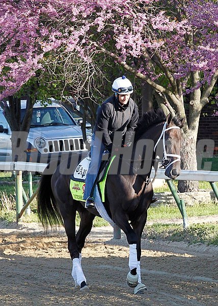 Churchill Downs; 2014; Work Out; Works; Kentucky Derby; Intense Holiday