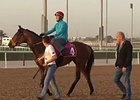 Dubai World Cup 2015: Trackwork March 27
