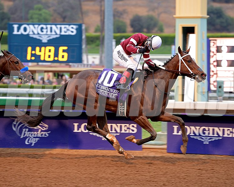 Caption: Untapable with Rosie Napravnik wins the Breeders' Cup Distaff (gr. I)
