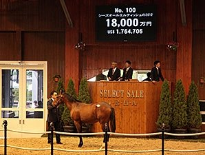 Deep Impact Colt Leads Record JRHA Sale