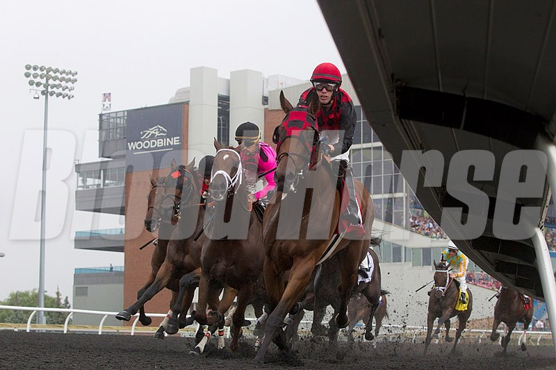 Toronto Ont.July7,2013.Woodbine Racetrack.Jockey Jesse Campbell guides Midnight Aria(R) to victory in the $1,000,000 dollar Queen's Plate Stakes at Woodbine.Midnight Aria is owned by Tucci Stables and trained by Nick Gonzalez. michael burns photo