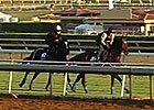 Breeders' Cup News Update for October 28, 2014