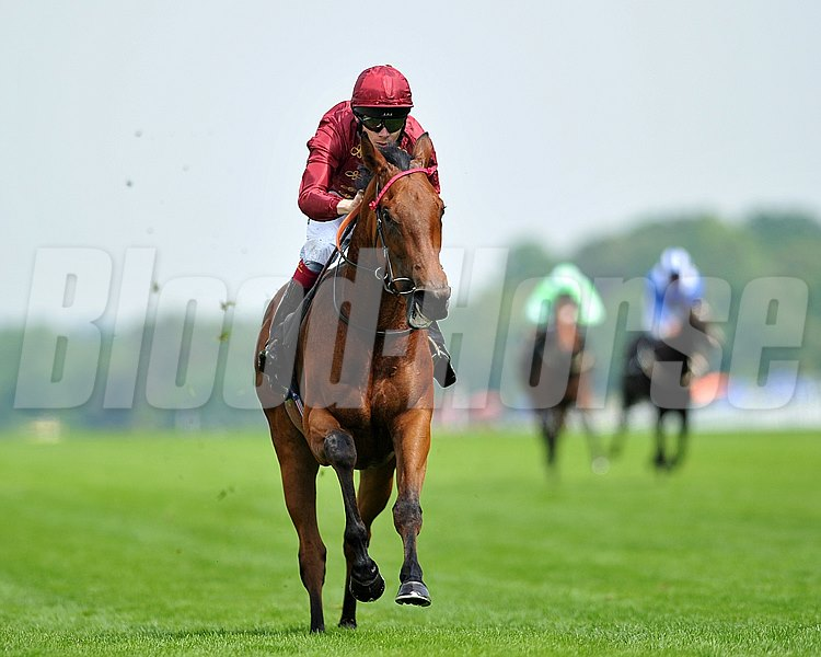Kiyoshi and jockey Jamie Spencer up ride to victory in the Albany Stakes at Royal Ascot.